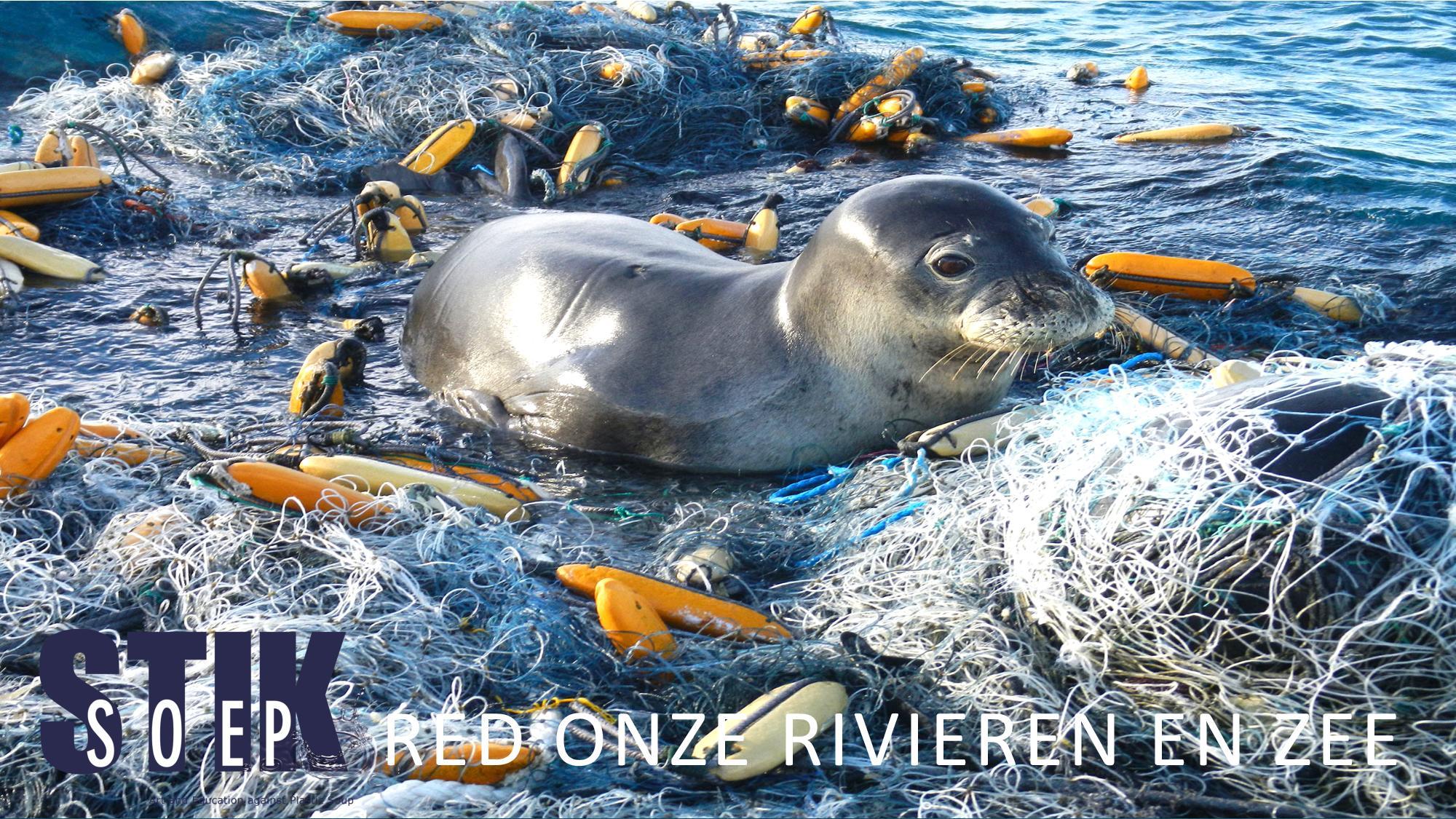 seal lichter-page-001
